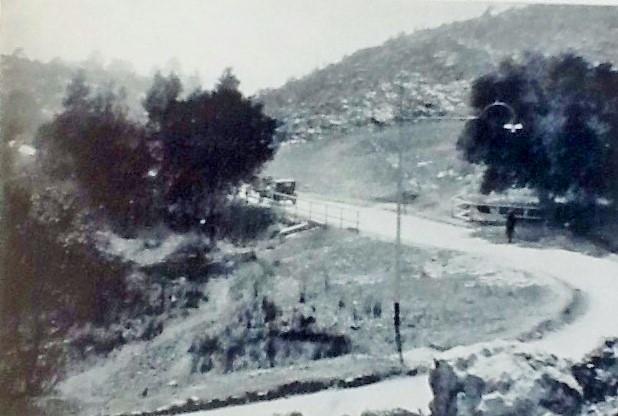 Sylvia Pass johannesburg